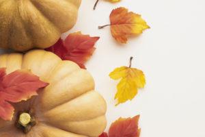 sárga sütőtök őszi levelekkel