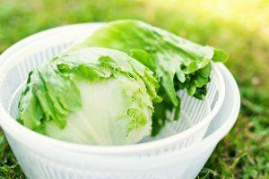 saláta centrifuga